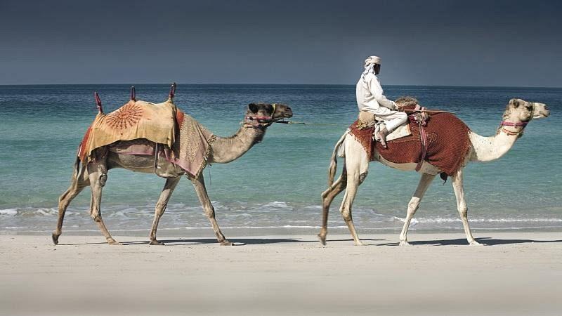 Exoticul Dubai